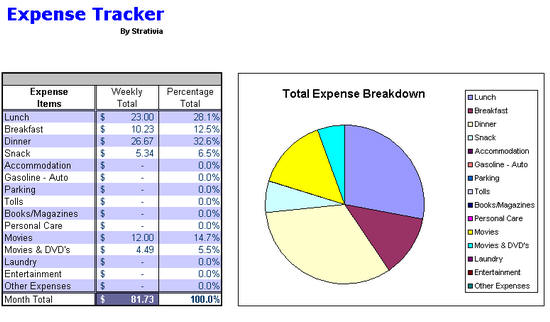 expense track summarized weekly expense report by day week chart